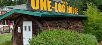 One-Log House